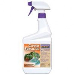 Copper Fungicide, Ready To Use, Qt