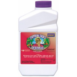 Captain Jack's Dead Bug, Quart