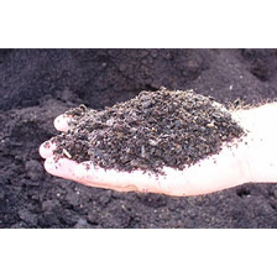 Equine Compost, 1 Cubic Yard